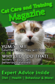 Cat Care and Training eMagazine
